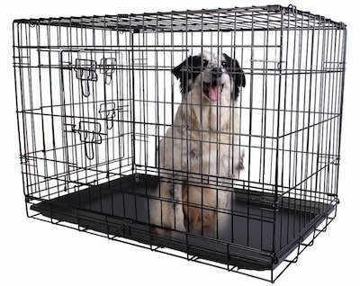 Open Top Dog Crate Goldenacresdogs Com