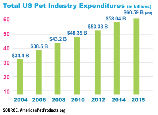 The State of Pet Healthcare 2020 (with Infographic) - Pet
