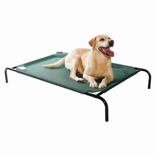 coolaroo elevated pet bed - Dog Beds For Large Dogs