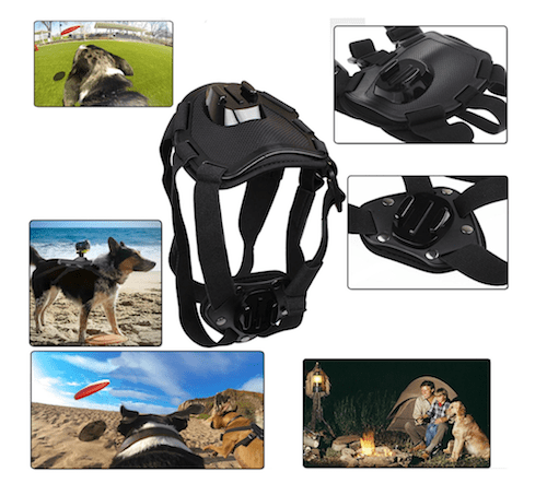 EEEKit Dog Mount Kit for Sony Action Cam HDR