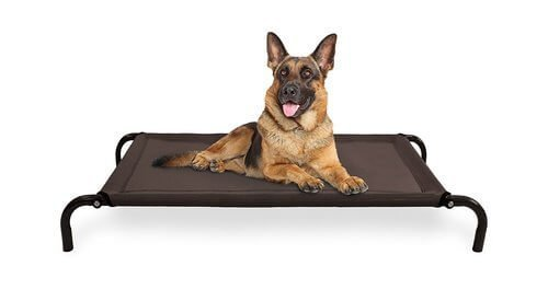 FurHaven Cot Pet Bed