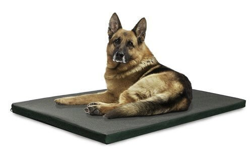 The 25 Best Rated Dog Beds For Large Dogs In 2019 Pet