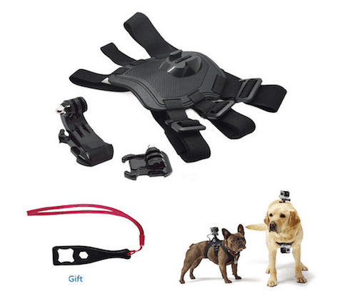 Lavince Dog Harness with Chest Mount for Sports Cameras