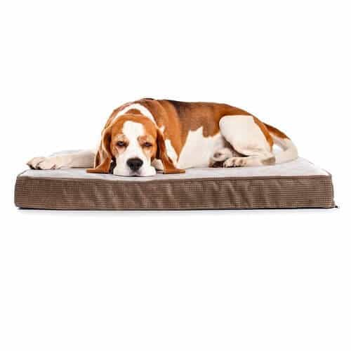 Milliard Quilted Padded Orthopedic Dog Bed