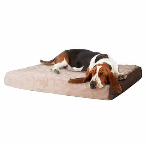 PAW Memory Foam Dog Bed with Removable Cover