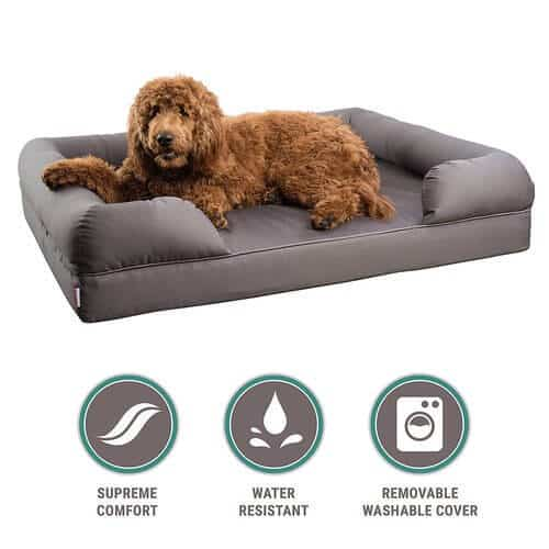The 25 Best Rated Dog Beds For Large Dogs In 2019 Pet Life Today