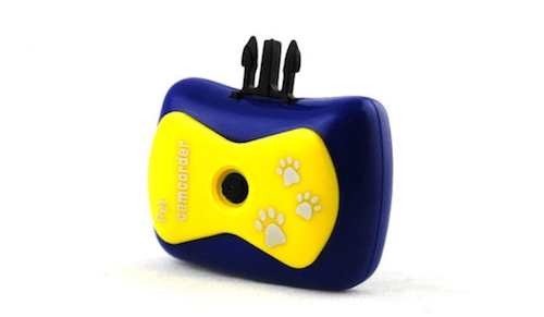 SINTECHNO SPC100 Pet Collar Camera and Video Recorder