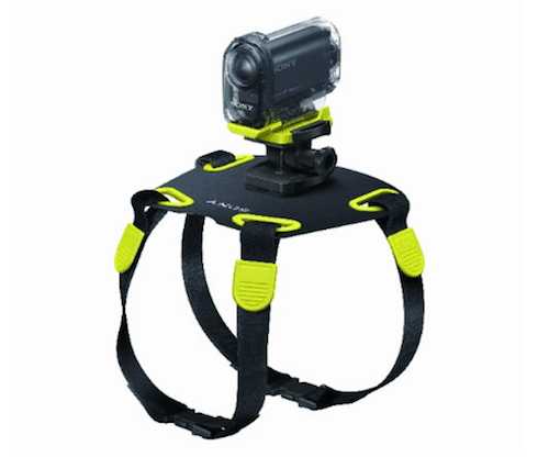 Sony AKADM1 Action Camera Mount for Dogs