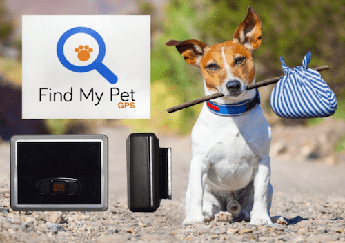 Find My Pet Classic GPS Dog Tracker