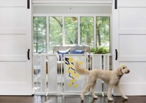 Fusion Gates for Dogs & Baby