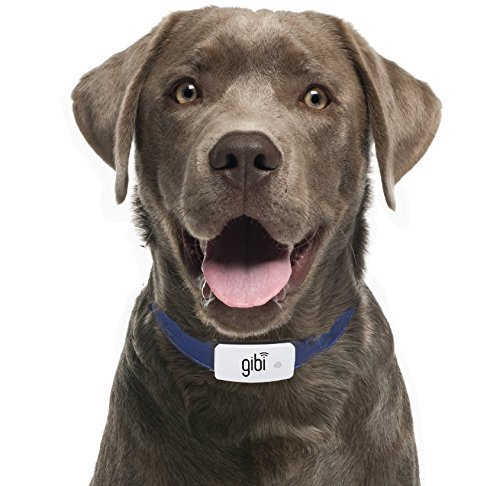 Gibi 2nd Gen Pet GPS Tracker