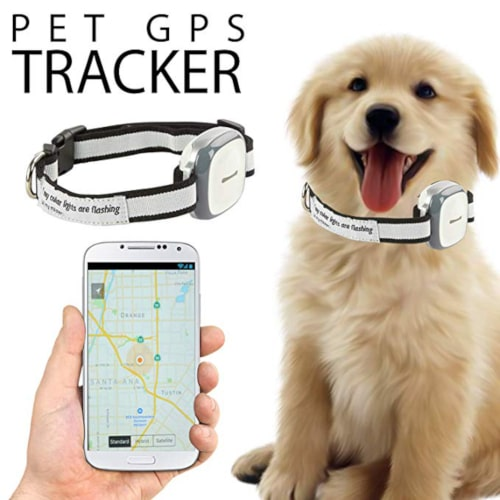 Talis-us Pet GPS Tracker