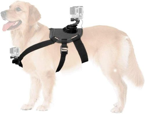 W&Z Dog Chest Strap Camera Harness