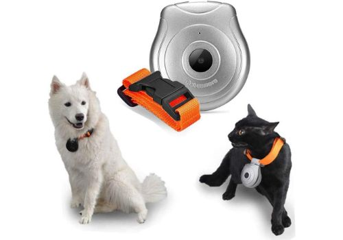 Waterproof Digital Pet Collar Camera
