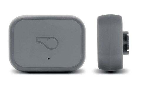Whistle 3 GPS Pet Tracker and Activity Monitor