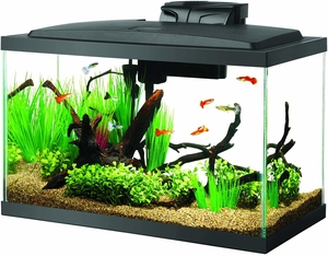 Aqueon 10 Gallon Fish Tank Aquarium