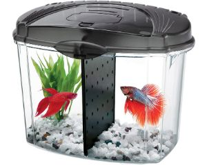 Aqueon Betta Bowl Aquarium Kit