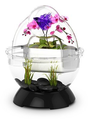 BioBubble Wonder Bubble Tunnel Kit