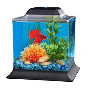KollerCraft Betta Kit, Cube Fish Tank, 1.5 Gallon
