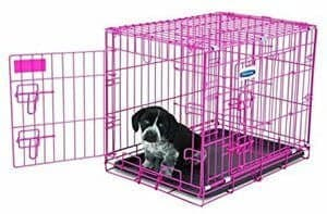 Petmate Puppy 2-Door Training Retreat Kennel