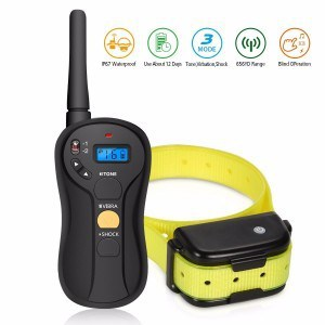 FOCUSPET Remote Dog Training Collar