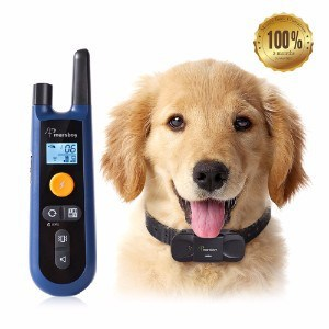Marsboy Dog Training Collar