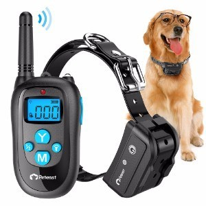 Peteast Remote Dog Training Collar
