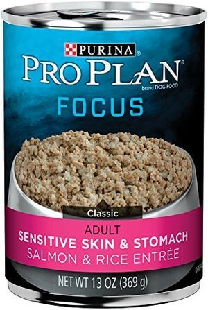 Purina Pro Plan Focus Sensitive Skin & Stomach Salmon & Rice Entre Classic Wet Dog Food - 12-13 oz Cans