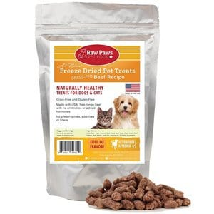 Raw Paws Pet Premium Raw Freeze Dried Beef Dog Treats