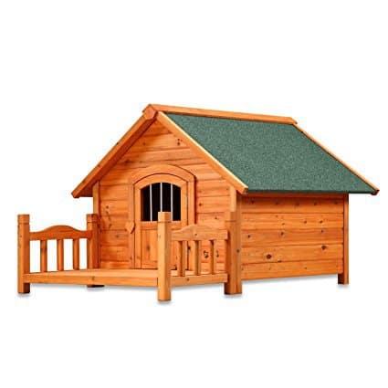 Pet Squeak Porch Pups House