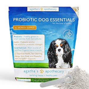 Agatha's Apothecary Advanced Probiotic Powder