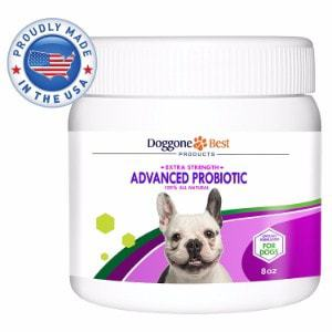 Doggone Best Products Probiotics for Dogs