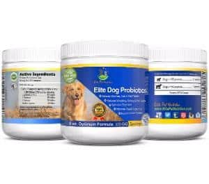 Elite Pet Nutrition Advanced Probiotic for Dogs