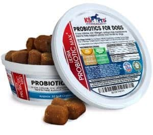 K9 Pro Best Probiotics For Dogs