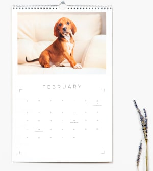 Nations Photo Lab 12 Month Flip Calendars