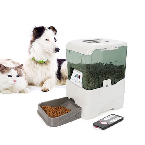 petsafe automatic for simply to quora qimg meal best two feed pet the buy main c is healthy feeder what cats