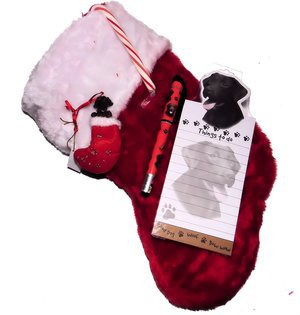 Thundles- Chocolate Lab Dog Christmas Stocking Gift Set with Matching Ornament Notepad & Pen & a Candy Cane