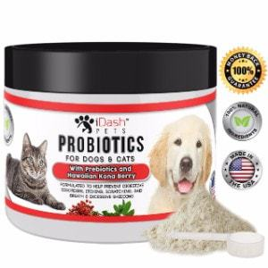 iDash Pets Advanced Probiotics for Dogs and Cats