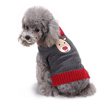 The 50 Best Dog Christmas Sweaters Of 2019 Pet Life Today