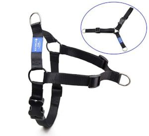 BIG SMILE PAW Adjustable Dog Harness