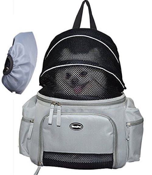 The 50 Best Dog Backpacks And Carriers Of 2019 Pet Life Today
