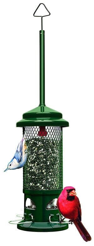 Brome 1057 Squirrel Buster Standard Wild Bird Feeder with 4 Metal Perches Seed Capacity
