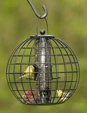Gardeners Supply Company - Squirrel Resistant Globe Cage Mixed Seed Bird Feeder