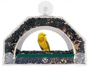 Grateful Gnome - Bridge - Window Bird Feeder - Clear Acrylic House for Small Birds Like Finch and Chickadee - Holds Up to 4 Cups - Virtually Squirrel Proof