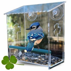 Kanaryware Window Bird Feeder - Built To Last A Lifetime - Decorate Your House With Beautiful Wild Birds