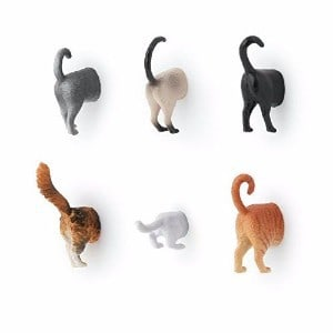 Kikkerland Cat Butt Magnets, Set of 6