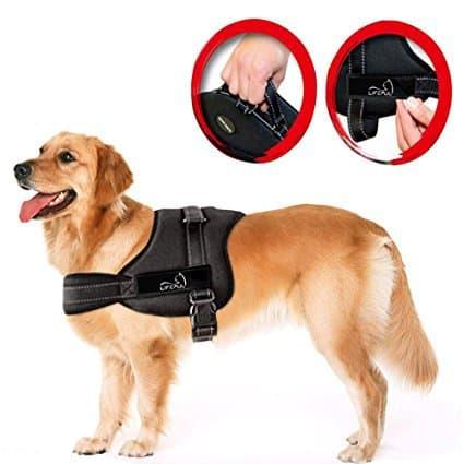 Lifepul TM No Pull Dog Vest Harness