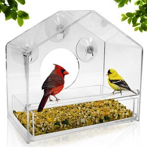 Nature gear - UPGRADED Window Bird Feeder Sliding Feed Tray Large Crystal Clear Weatherproof Design Squirrel Resistant Drains Rain Water to keep bird seed dr