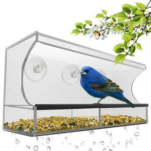 Natures Hangout Window Bird Feeder with Removable Tray