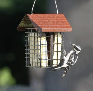 Stokes Select Double Suet Bird Feeder with Metal Roof Two Suet Capacity
